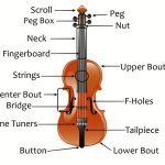 <span>Parts of a Violin</span>