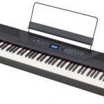 <span>Alesis Recital Review</span>